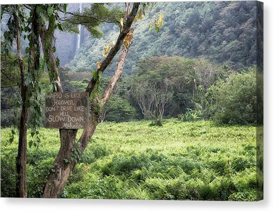 Waipio Valley Road Rules Canvas Print