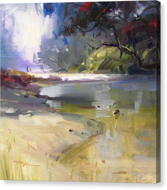 Waipu Cove Canvas Print by Richard Robinson