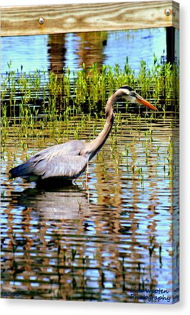 Canvas Print featuring the photograph Waiting For Dinner by Lisa Wooten