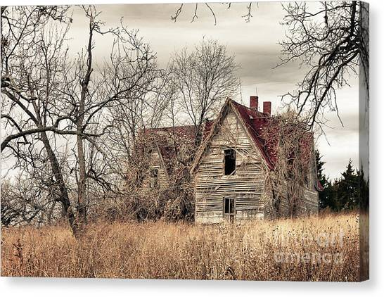 Waiting For New Owners Canvas Print by E Mac MacKay
