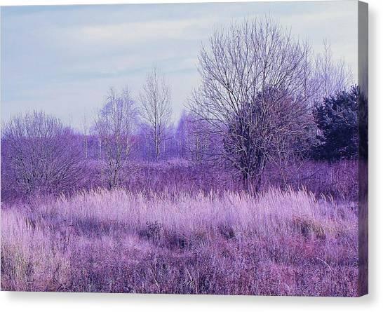 Canvas Print - Waiting For Snow by Slawek Aniol