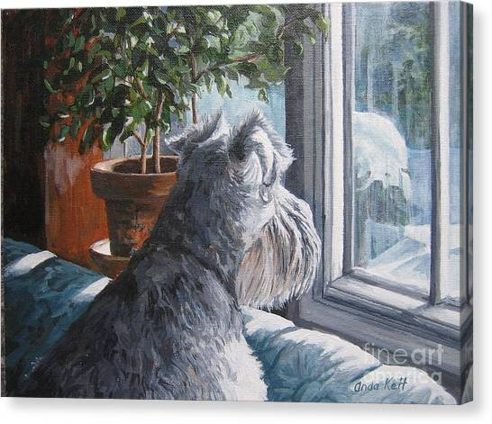 Schnauzers Canvas Print - Waiting Patiently by Anda Kett
