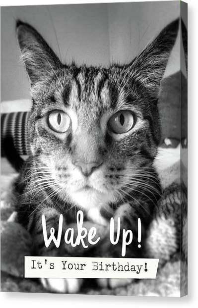 Face Canvas Print - Wake Up It's Your Birthday Cat- Art By Linda Woods by Linda Woods
