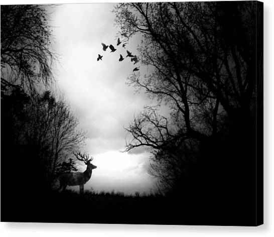 Waking From Winters Sleep Canvas Print