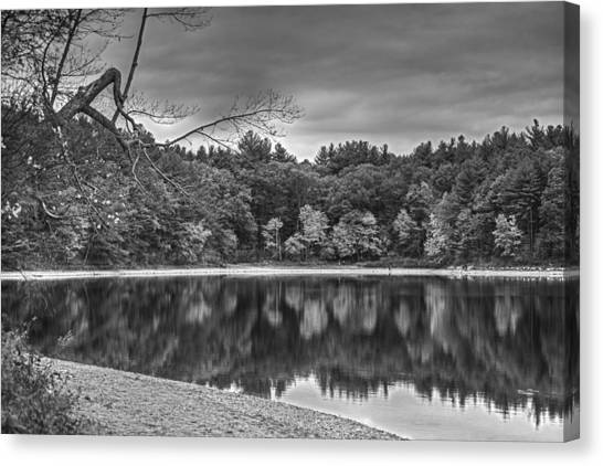 Walden Pond Canvas Print - Walden Pond Fall Foliage Concord Ma Black And White by Toby McGuire