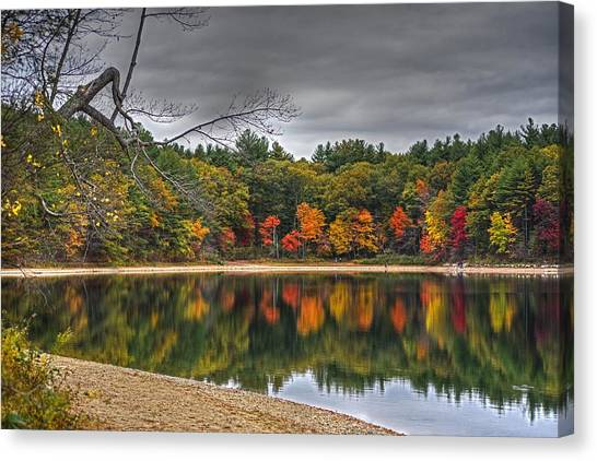 Walden Pond Canvas Print - Walden Pond Fall Foliage Concord Ma by Toby McGuire