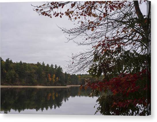 Walden Pond Canvas Print - Walden Pond Fall Foliage Le 2aves Concord Ma by Toby McGuire