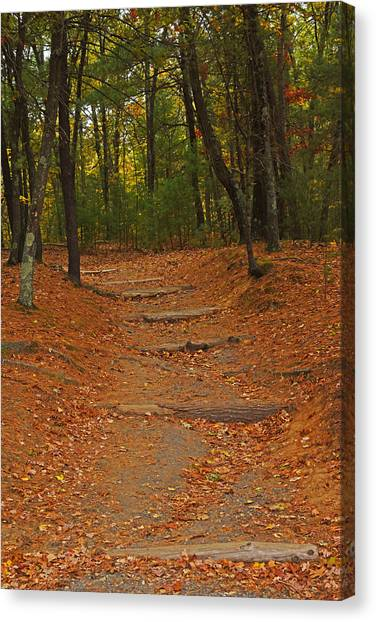 Walden Pond Canvas Print - Walden Pond Path Into The Forest by Toby McGuire