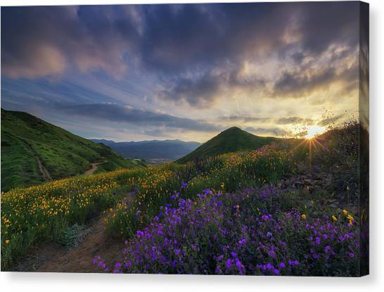 Canvas Print featuring the photograph Walker Canyon by Tassanee Angiolillo