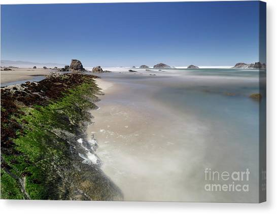 Have Canvas Print - Walking In The Water by Masako Metz