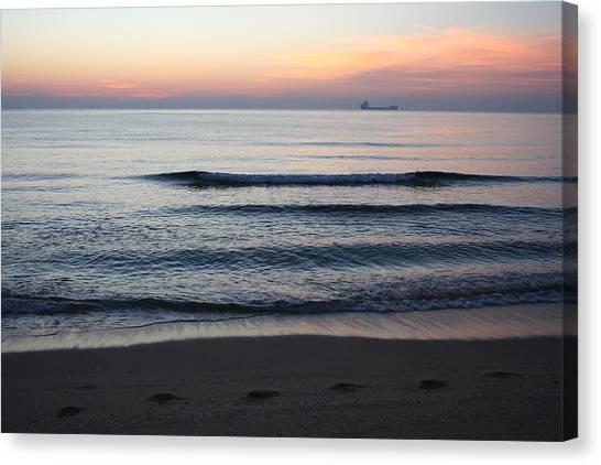 Walking On Shore Canvas Print