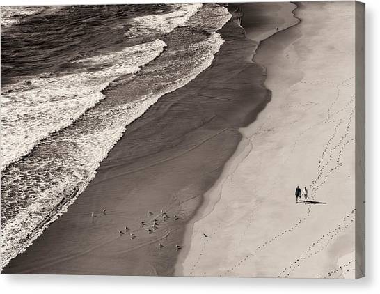 Sea Bird Canvas Print - Walking On The Beach by Francesco Caso