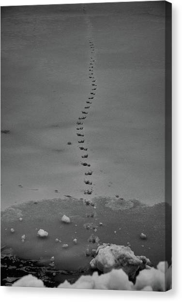 Canvas Print featuring the photograph Walking On Thin Ice by Jason Coward
