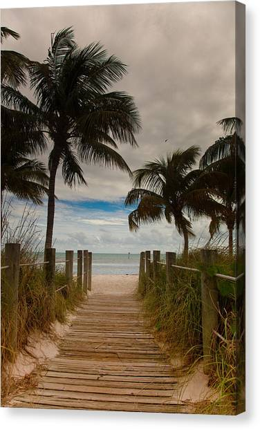 Walking To The Beach Canvas Print by Patrick  Flynn