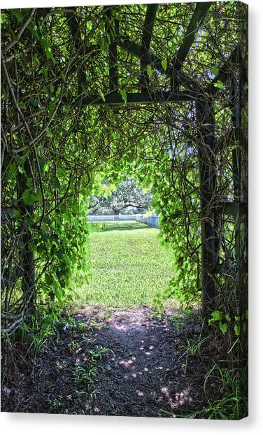 Walkway From Greenhouse Canvas Print