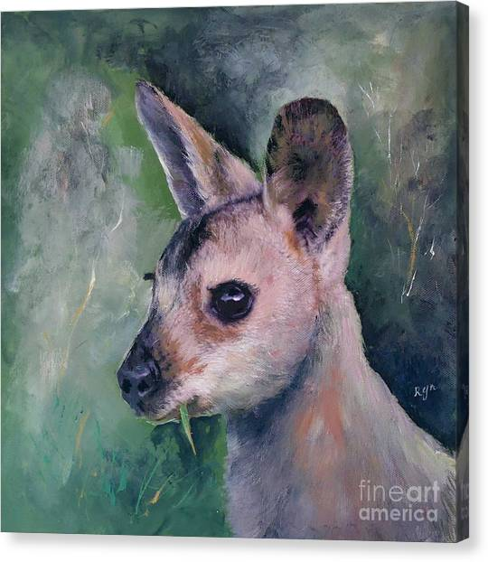 Wallaby Grazing Canvas Print