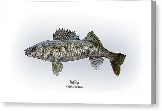 Angling Art Canvas Print - Walleye by Ralph Martens