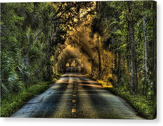 Flagler Beach Canvas Print - Walter Boardman Lane by Andrew Armstrong  -  Mad Lab Images