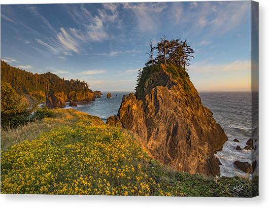 Warm And Peaceful Coast Canvas Print by Leland D Howard