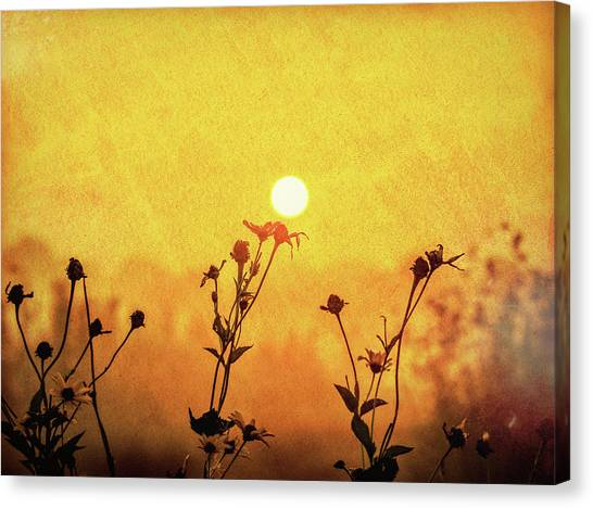 Prairie Sunrises Canvas Print - Warm Embrace by Dan Sproul