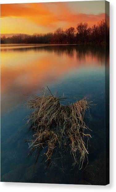 Canvas Print featuring the photograph Warm Evening by Davor Zerjav