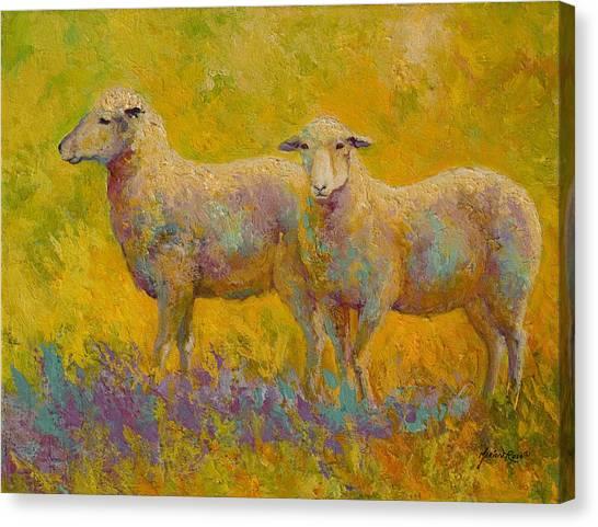Llama Canvas Print - Warm Glow - Sheep Pair by Marion Rose