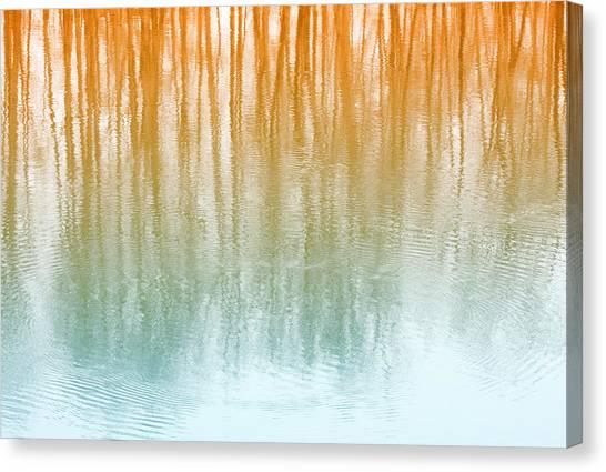 Warm Reflections Canvas Print