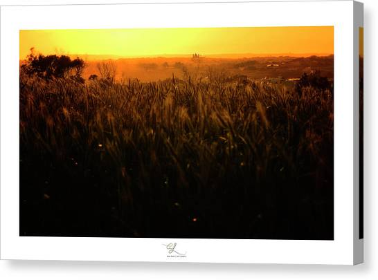 Warmth Of A Yellow Sun Canvas Print