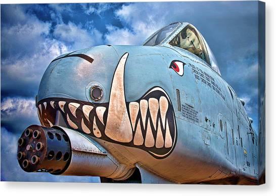 Canvas Print - Warthog by Murray Bloom
