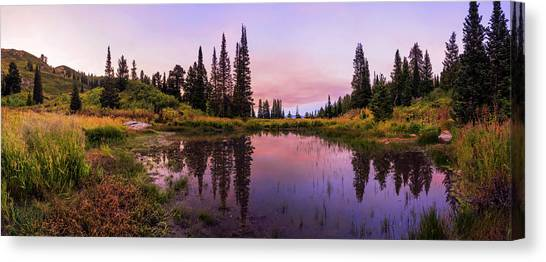 Pine Trees Canvas Print - Wasatch Back by Chad Dutson