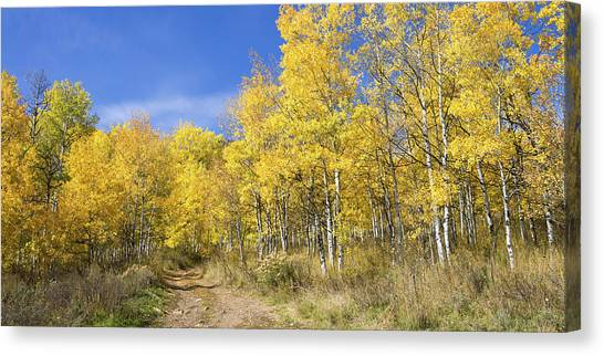 Wasatch Mountains Canvas Print - Wasatch Fall by Chad Dutson