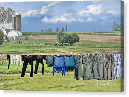 Wash Day In Amish Country Canvas Print