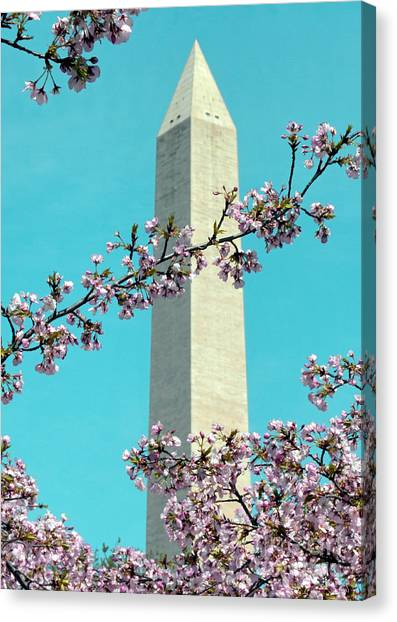 Washington D.c. In Springtime 2 Canvas Print