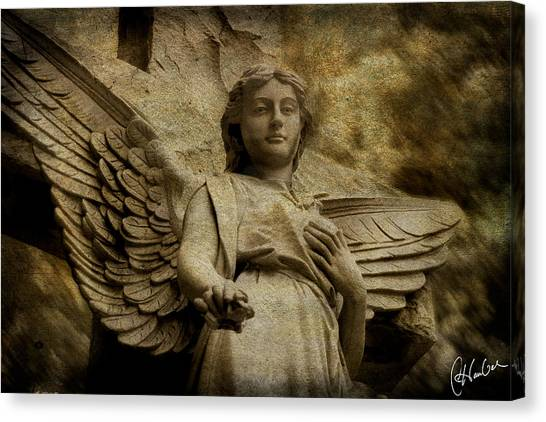 Watching Over Us Canvas Print by Christine Hauber