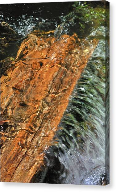 Water And Wood Canvas Print