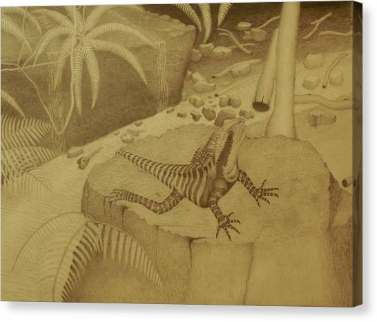Fineart Canvas Print - Water Dragon Lizard by Brian Leverton