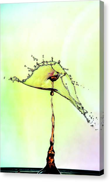 Water Drop #7 Canvas Print