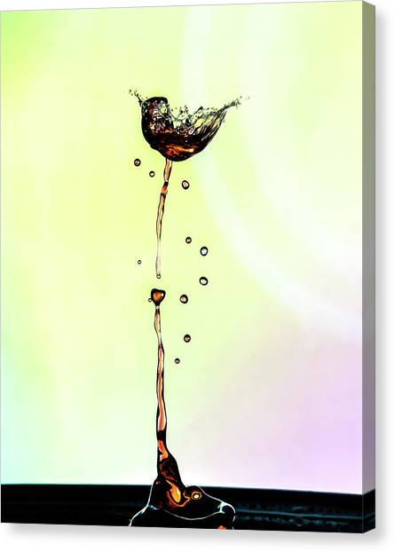 Water Drop #9 Canvas Print