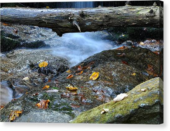 Crabtree Falls Canvas Print - Water Falls by Todd Hostetter