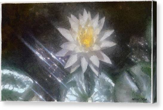 Water Lily In Sunlight Canvas Print