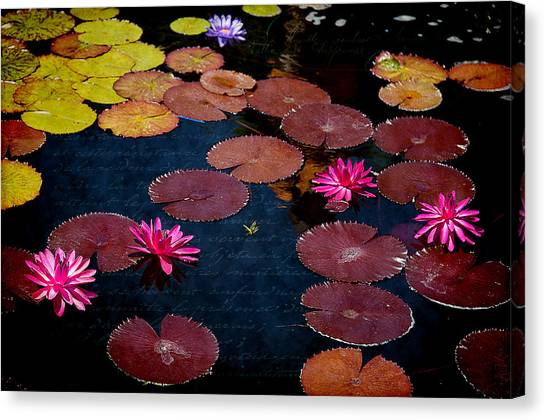 Water Lily World Canvas Print