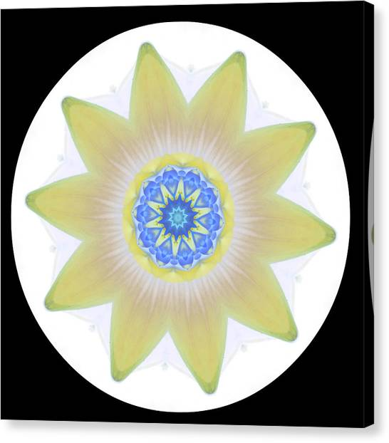 Water Lily Yellow Canvas Print
