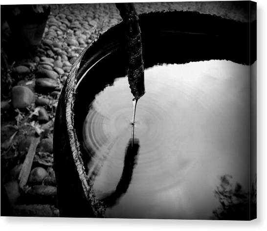 Water Rings Canvas Print