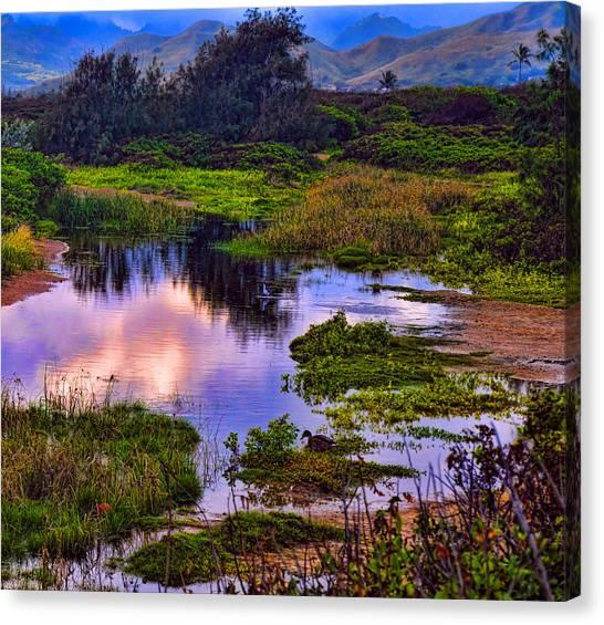 Water Scene Beauty 3 Canvas Print
