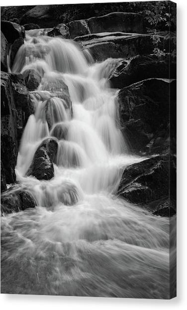 water stair close to the Heinrich Heine hiking way, Harz Canvas Print