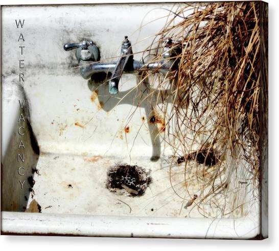 Water Vacancy  Canvas Print by Steven Digman