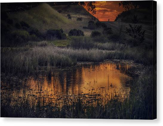 Waterbird Preserve Sunrise Canvas Print