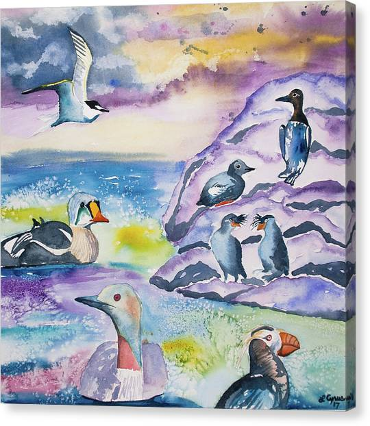 Auklets Canvas Print - Watercolor - Alaska Seabird Gathering by Cascade Colors