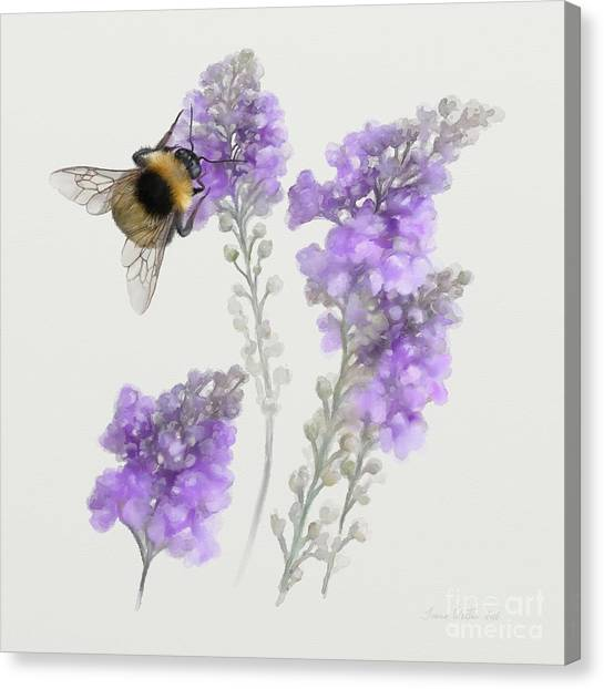 Watercolor Bumble Bee Canvas Print