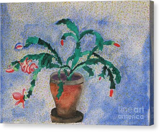 Watercolor Christmas Cactus First Bloom Canvas Print by James SheppardIII